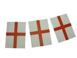 St George Bunting ( PP04041)