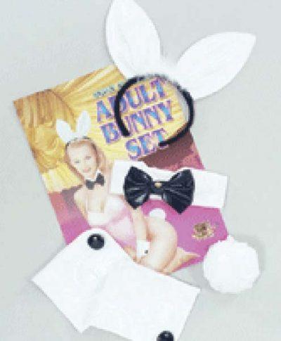 Bunny Kit Vinyl (PP00587)