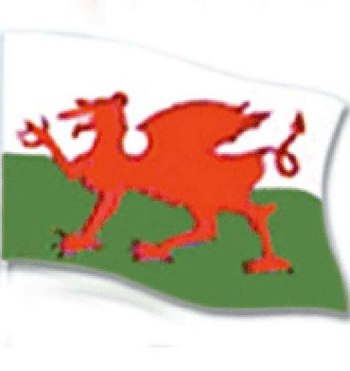 Flag 5`x3` Wales (PP00818)