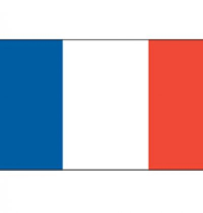 Flag 5`x3` France (P00821)