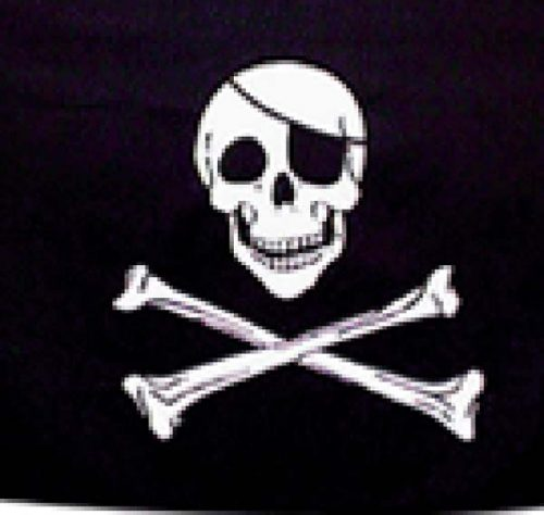 Pirate Flag 5ftx3ft (PP01306)