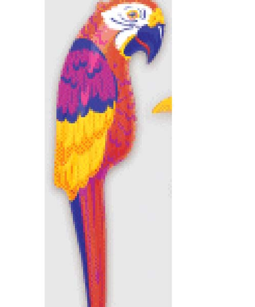 Inflatable Parrot Large (PP01472)