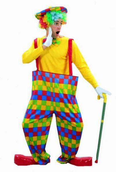 Clown rainbow (PP02363)