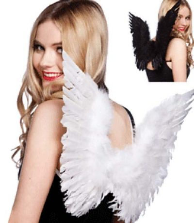 Angel Wings Feathers (PP03022)