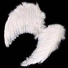 Angel Wings (PP05221)